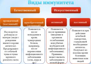 Особенности иммунной системы