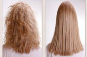 Характеристики волос