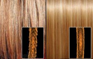 Сухость и ломкость волос